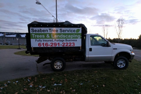 Welcome to the New Website of Seaben Tree Service!
